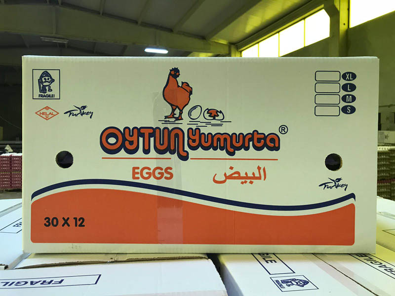 oytun-yumurta (13)
